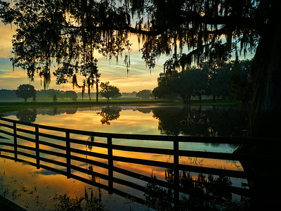 Sunrise over Farm Lake in Ocala