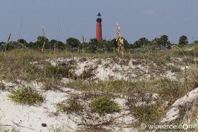 Ponce Inlet Lighthouse Port Orange, FL Get notifications via: