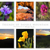 A collage for the Friends of Saddle Mountain.