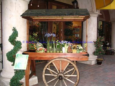 cart of flowers at Blooming Flowers and Gifts European Village, Palm Coast, FL