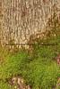 042117-FogelsvilleDam_HDR6