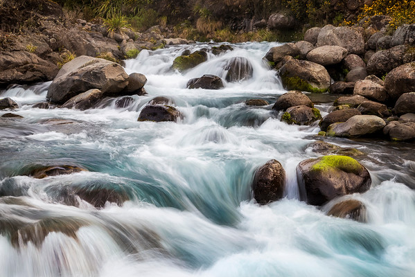Mountain Waters - Mahuia Rapids