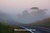 Foggy Road Scene, Crawford County, Wisconsin