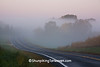 Foggy Road Scene, Crawford County, Wisconsin