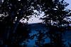 Foggy Dawn on Wildcat Mountain, Vernon County, Wisconsin