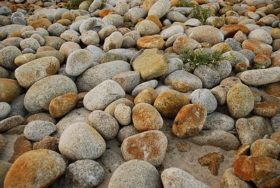 "Why they call it ""Pebble"" Beach  © 2007 Brian Neal"