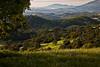mokelumne hill valley