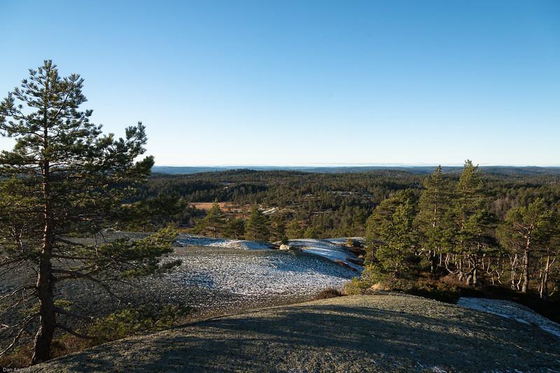 Utsikt fra Heimdalsknuten: Skoglandskap indre Agder