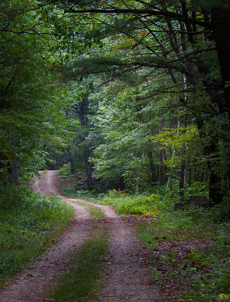 Path in Quabbin Reservoir Massachusetts