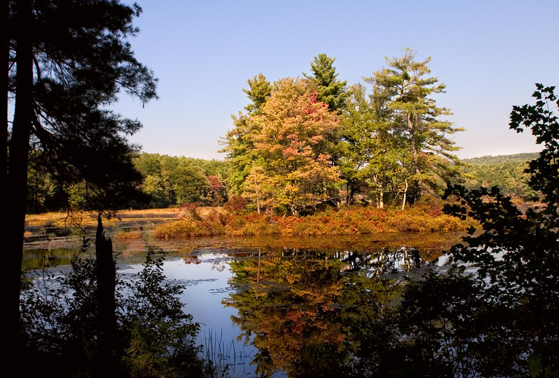 Fall color on Harvard Pond in Massachusetts