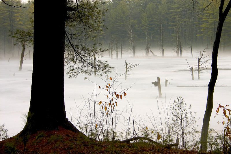 Frozen misty water at Quabbin Reservoir Petersham Ma.