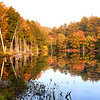 Trees in Fall color reflected in the water New England