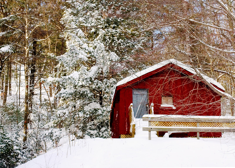 Little Red Cabin in snow covered forest