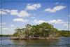 Mangrove Island...White Water Bay..Everglades National Park