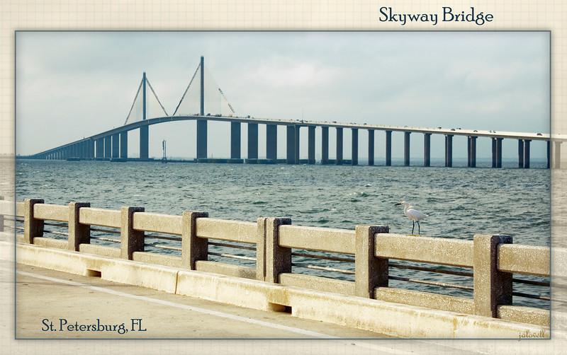 Skyway Bridge in St Petersburg, FL viewed from the old bridge, now a fishing pier. A Snowy Egret holds his own the stiff breeze keeping his eye on tasty morsels left unguarded by fishermen.