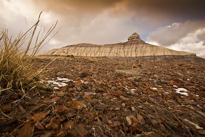 Petrified wood scraps and a butte.