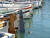 Barques de pêcheurs dans le port de Cassis