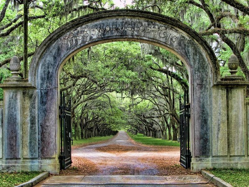 Wormsloe Gate