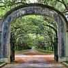 Wormsloe Gate
