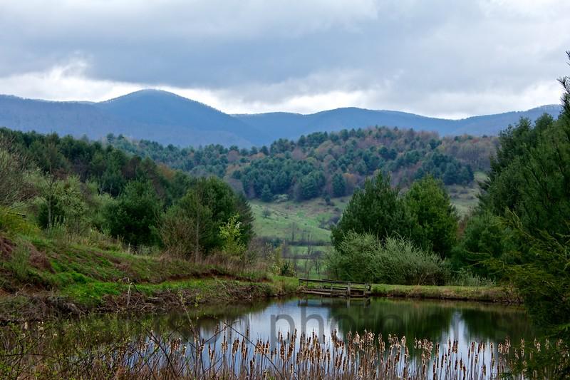 Freedom Mountain Academy<br /> Mt. City, TN