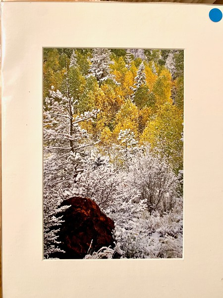 """12"""" x 16"""" Fine Art Matted print. Print size is 7.5"""" x 11.25"""" Arctic white acid-free mat with an acid-free foam core backing in a crystal clear sleeve. These are ready to be framed. Normally $150 each, SALE $19 each or 3 for $50.  I can provide professionally-finished custom framing as well."""