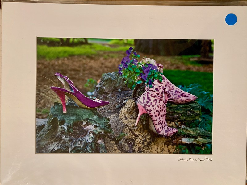 """Shoe Garden.  12"""" x 16"""" Fine Art Matted print. Print size is 7.5"""" x 11.25"""" Arctic white acid-free mat with an acid-free foam core backing. These are ready to be framed. Normally $150 each, SALE $19 each or 3 for $50.  I can provide framing as well."""