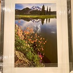 "SOLD!  34"" x 26"" Wood Framed ""Summer Wildflowers at Sparks Lake""  Print is 16"" x 24""  8 ply thick mat.  9/10 condition.  Normally $650.  SALE $199"