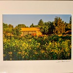 "Grant Road Farm. 12"" x 16"" Fine Art Matted print. Print size is 7.5"" x 11.25"" Arctic white acid-free mat with an acid-free foam core backing in a crystal clear sleeve. These are ready to be framed. Normally $150 each, SALE $19 each or 3 for $50.  I can provide professionally-finished custom framing as well."