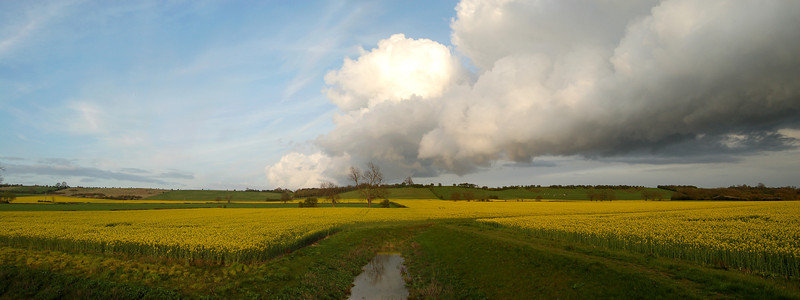 Drainage Ditch and Big Cloud