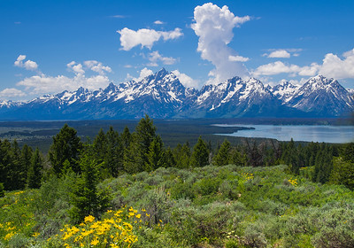Teton View from Signal Mountain