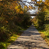 On the Lochside Trail, a branch of the Galloping Goose trail that heads north to Swartz Bay.