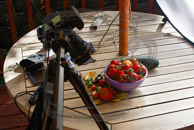 My natural light setup: veggies arranged, reflector screen blocking the sun light, PLamp holding the reflector, Spyder Cube and color chart (to get the tomato colors right), ND filter, etc.