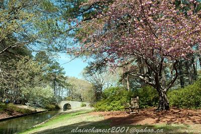 Le printemps du canal