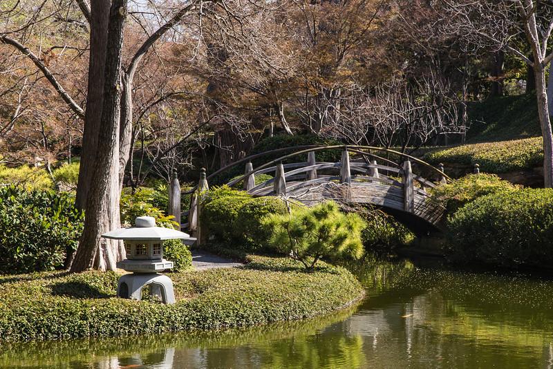 Japanese Water Garden 2