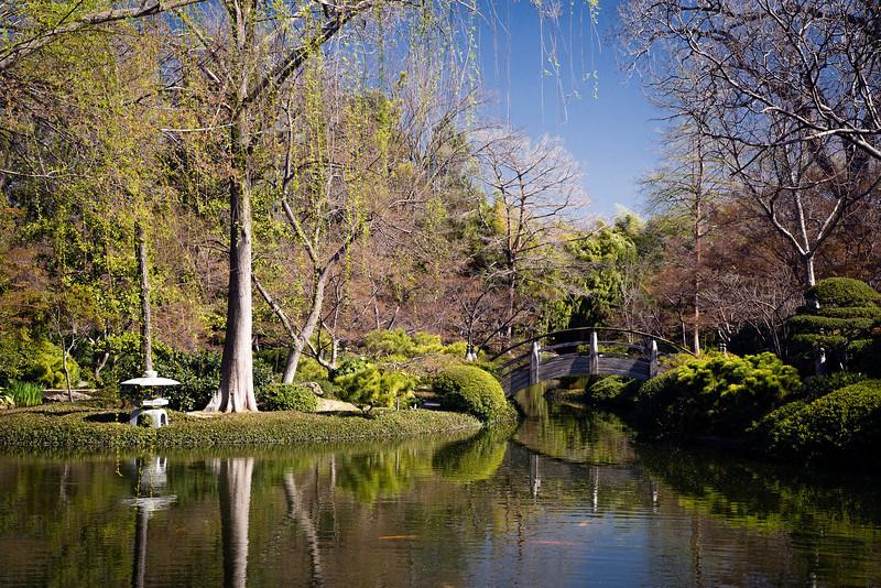Japanese Water Garden 1