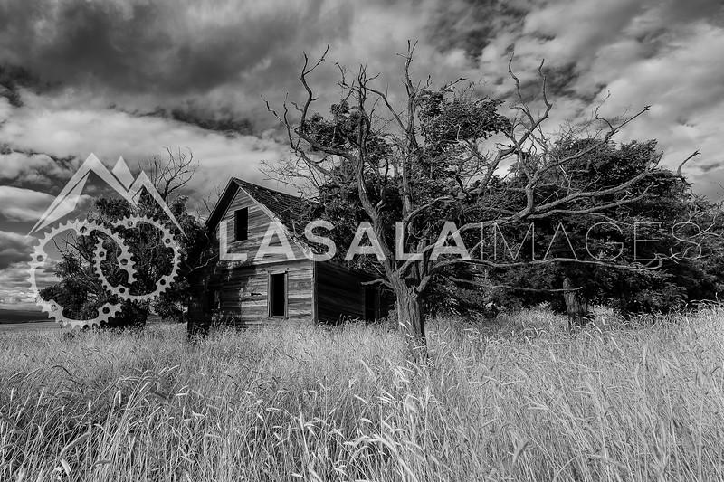 Abandoned house in Southern Washington