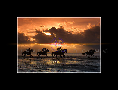 Racing into the sunset, as the final race of the Ballyheigue Flapping race meeting ends on the strand in the North Kerry seaside resort on Sunday. Pic Brendan Landy