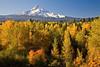 Mt Hood in the Fall