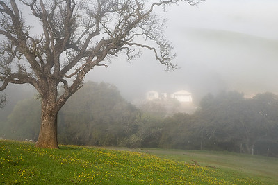 123Farm house in Fog