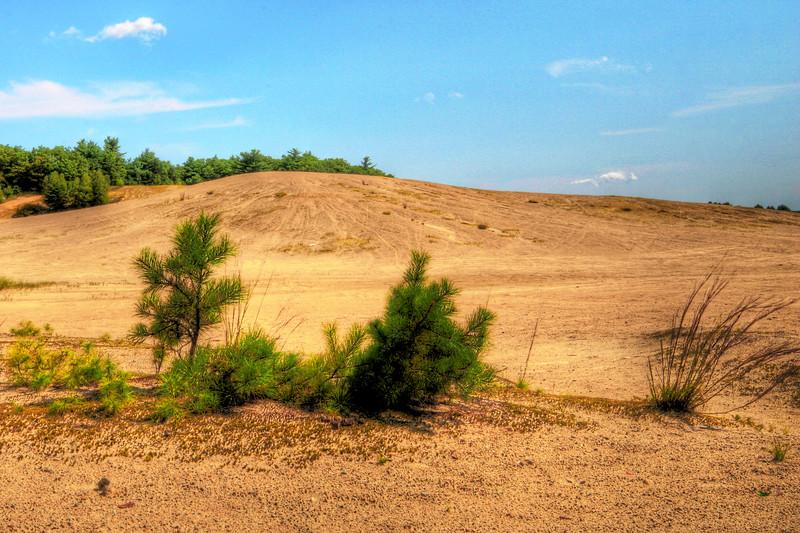 Dunes  in Rhode Island