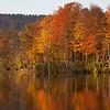 Gatehouse Pond sunrise - Tully,NY