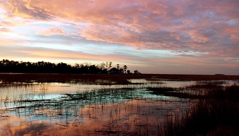 Georgia swamps Georgia Swamps