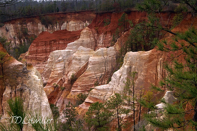 Providence Canyon, GA     Providence Canyon State Park, GA aka The Little Grand Canyon      It was overcast/ cloudy all day.