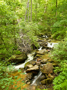 Amicalola Falls Stream