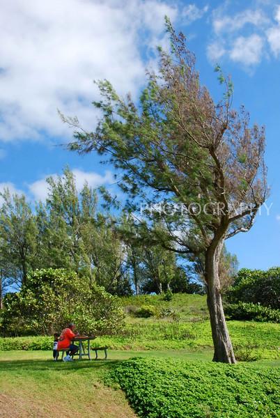 Picnic for two (Church Bay, Bermuda- Sat 10 110 09)