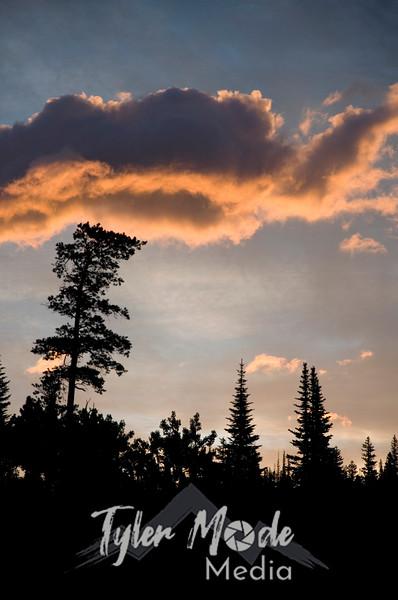 1528  G Sunrise Cloud and Tree V