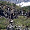 1205  Bighorn Climbing