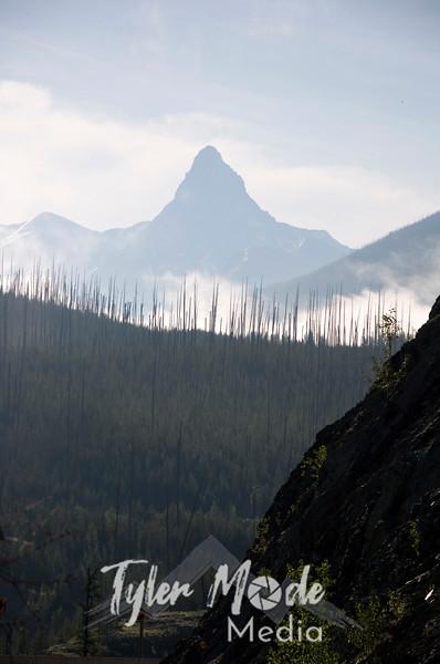 1107  G Misty Mountains V