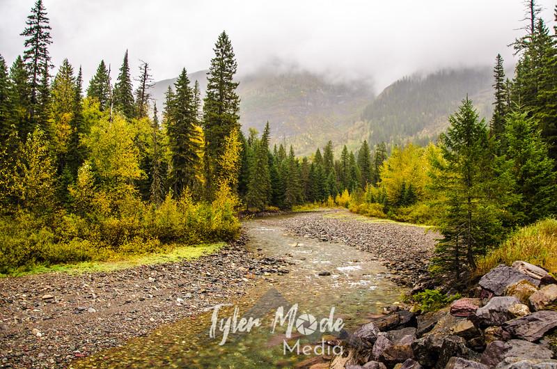 1260  G Rainy River Sharp