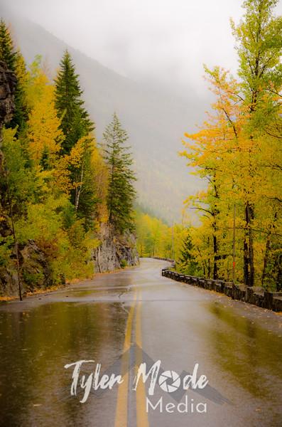1246  G Rainy GTS Road Soft V